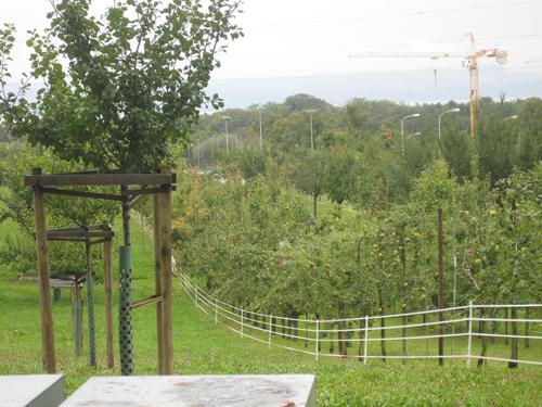 rencontre regionale darboriculture Un service d'écoute viticulture, arboriculture a l'initiative de la société de production d'eau du cébron et de la chambre d'agriculture une rencontre.